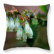 Blueberries In The Morning Throw Pillow