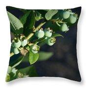 Blueberry Branch Throw Pillow
