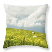 Blueberry Field And Goldenrod With Dramatic Sky In Maine Throw Pillow by Keith Webber Jr