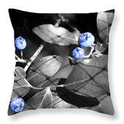 Blueberry Magic Throw Pillow