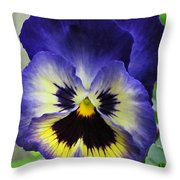 Blueberry Pansy Throw Pillow