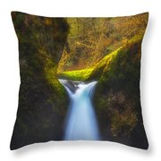 Blueberry Punch Throw Pillow