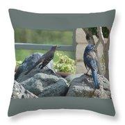 Bluejay And Mockingbird Throw Pillow