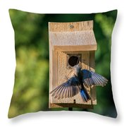 Bluebird At Nest Throw Pillow