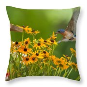 Bluebird Flying Over The Black Eyed Susans Throw Pillow