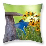 Bluebird Flying Thru Black Eyed Susans Throw Pillow