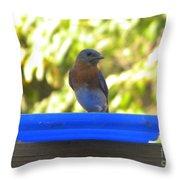 Bluebird Frisbee Throw Pillow