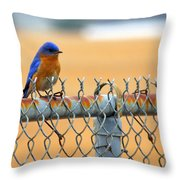 Bluebird On A Fence Throw Pillow