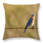 Bluebird On A Wire Throw Pillow