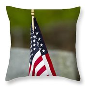 Bluebird Perched On American Flag Throw Pillow by John Vose