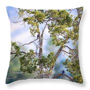 Bluebird Tree Throw Pillow