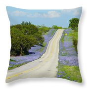 Bluebonnet Highway 2am-28667 Throw Pillow