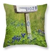 Bluebonnets And Mailbox Throw Pillow