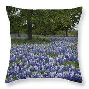 Bluebonnets And Oaks Throw Pillow