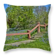 Bluebonnets And Stairs Throw Pillow