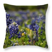 Bluebonnets In Spring Throw Pillow