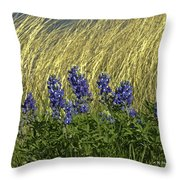 Bluebonnets With Ladybug Throw Pillow