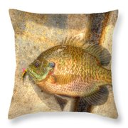 Bluegill In Hdr Throw Pillow