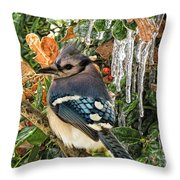 Bluejay And Ice Throw Pillow
