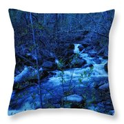 Blues Traveler Throw Pillow