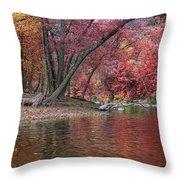 Bluestone River Throw Pillow