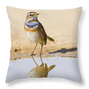 Bluethroat Luscinia Svecica Throw Pillow