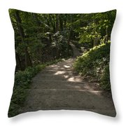 Bluff Trail  Throw Pillow