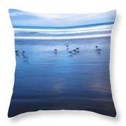 Blurry Bird Beach Throw Pillow