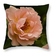 Blush Pink Rose With Dew Throw Pillow
