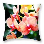 Blushing Beauty Throw Pillow