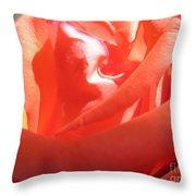 Blushing Orange Rose 2 Throw Pillow