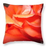 Blushing Orange Rose 6 Throw Pillow