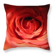 Blushing Orange Rose 3 Throw Pillow