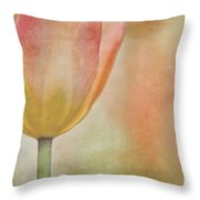 Blushing Spring Throw Pillow
