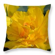 Blushing Yellow Throw Pillow