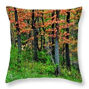 Blustery October Weather Throw Pillow