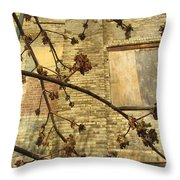 Boarded Windows And Branches Throw Pillow