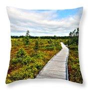 Orono Boardwalk Throw Pillow