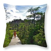 Boardwalk In Salmonier Nature Park-nl Throw Pillow