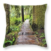 Boardwalk On The Rainforest Trail In Throw Pillow