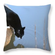 Boat Drinking From Pond Throw Pillow