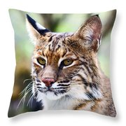 Bob Cat Pose Throw Pillow