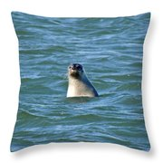 Bobbing In The Water Throw Pillow
