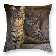 Bobcat 8 Throw Pillow