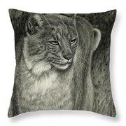 Bobcat Emerging Throw Pillow