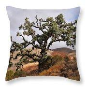 Bobcats Tree Throw Pillow