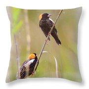 Bobolink Duo Throw Pillow