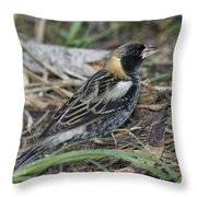 Bobolink Feeding Throw Pillow