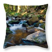 Bodefall Throw Pillow
