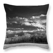 Bode's Domain Throw Pillow